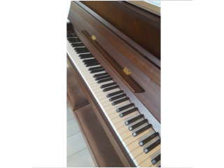 Piano lessons online or face to face in Flitwick