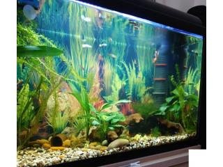 Aquarium set 120l