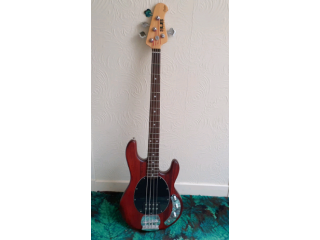 Sterling by Musicman SUB Series RAY4 Electric Bass Guitar Walnut Satin