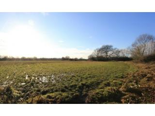 Land For Sale Tanyard Farm